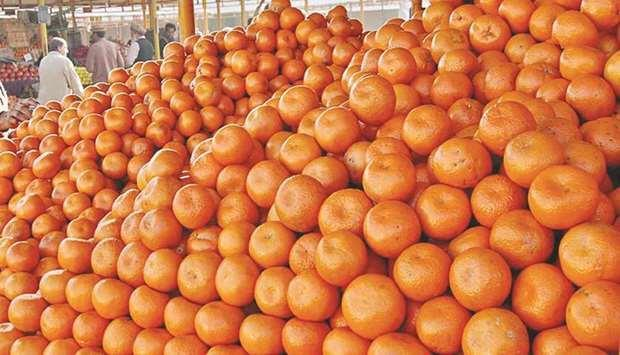 Pakistan expects 20% rise in citrus exports | MENAFN.COM