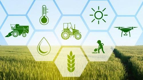 India- Agriculture Technologies Market 2019 Comprehensive