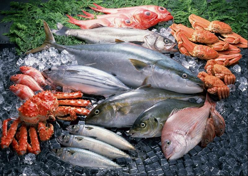 Indian Fish Market Projected to Reach INR 1,998 Billion by