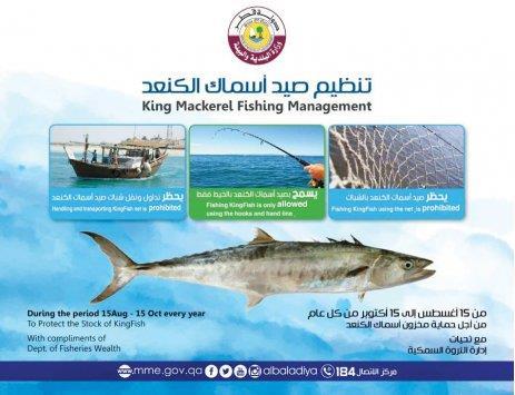 Qatar- Ban on fishing King Fish from August 15 | MENAFN COM