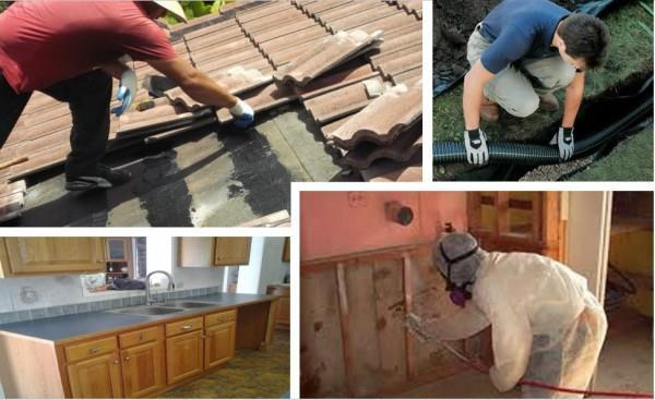Mold Remediation Baltimore Firm, MJ Home Services, Now Offers Free  Estimates For Customers Needing Services | MENAFN.COM