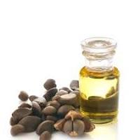 Camellia Oleifera Oil (CAS 225233-97-6) Market Insights and Forecast to  2026   MENAFN.COM
