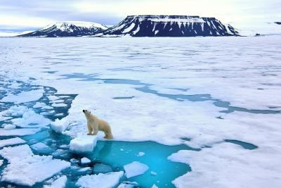 COP26 should focus on climate finance, transfer of green te...